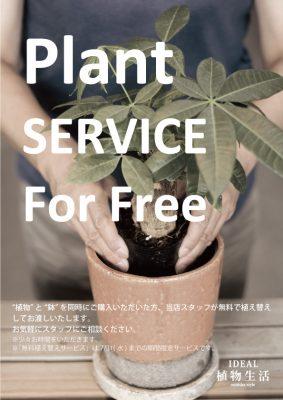 無料植え替えサービス